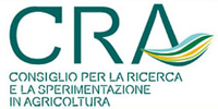 CRA low resolution